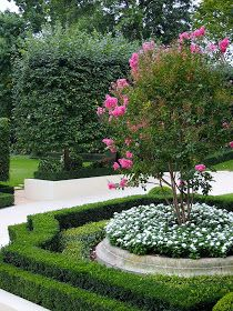 Formal garden with shaped boxwoods