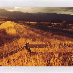New Zealand road tripping, iPhone picture, Ngawi, NZ. New Zealand, Eve, Road Trip, Landscapes, Sunset, Iphone, Lighting, Pictures, Photography