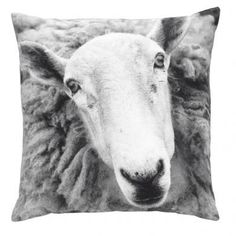 Buy By Nord Pillows and Throws at CULOW - America's designer home textile store White Pillows, Throw Pillows, Modern Cushions, Animal Cushions, Printed Cushions, House Doctor, Farm Yard, Cotton Pillow, Scandinavian Design