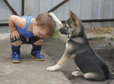 #baby #puppy 1