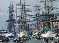 sail 2015 - Google zoeken