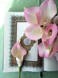 "DesertRose,;,Qur'an Kareem,;,    ɂтۃ؍ӑÑБՑ֘˜ǘȘɘИҘԘܘ࠘ŘƘǘʘИјؙYÙřș̙͙ΙϙЙљҙәٙۙęΚZʚ˚͚̚ΚϚКњҚӚԚ՛ݛޛߛʛݝНѝҝӞ۟ϟПҟӟ٠ąतभमािૐღṨ'†•⁂ℂℌℓ℗℘ℛℝ℮ℰ∂⊱⒯⒴Ⓒⓐ╮◉◐◬◭☀☂☄☝☠☢☣☥☨☪☮☯☸☹☻☼☾♁♔♗♛♡♤♥♪♱♻⚖⚜⚝⚣⚤⚬⚸⚾⛄⛪⛵⛽✤✨✿❤❥❦➨⥾⦿ﭼﮧﮪﰠﰡﰳﰴﱇﱎﱑﱒﱔﱞﱷﱸﲂﲴﳀﳐﶊﶺﷲﷳﷴﷵﷺﷻ﷼﷽️ﻄﻈߏߒ !""#$%&()*+,-./3467:<=>?@[]^_~      ɂтۃ؍ӑÑБՑ֘˜ǘȘɘИҘԘܘ࠘ŘƘǘʘИјؙYÙřș̙͙ΙϙЙљҙәٙۙęΚZʚ˚͚̚ΚϚКњҚӚԚ՛ݛޛߛʛݝНѝҝӞ۟ϟПҟӟ٠ąतभमािૐღṨ'†•⁂ℂℌℓ℗℘ℛℝ℮ℰ∂⊱⒯⒴Ⓒⓐ╮◉◐◬◭☀☂☄☝☠☢☣☥☨☪☮☯☸☹☻☼☾♁♔♗♛♡♤♥♪♱♻⚖⚜⚝⚣⚤⚬⚸⚾⛄⛪⛵⛽✤✨✿❤❥❦➨⥾⦿ﭼﮧﮪﰠﰡﰳﰴﱇﱎﱑﱒﱔﱞﱷﱸﲂﲴﳀﳐﶊﶺﷲﷳﷴﷵﷺﷻ﷼﷽️ﻄﻈߏߒ !""#$%&()*+,-./3467"