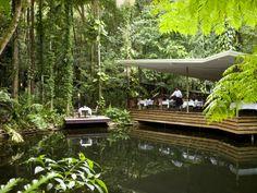Daintree in Queensland
