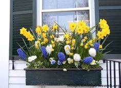 Blumenkästen Balkongestaltung