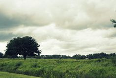 Bartow Highway by Laurie Perry #onetree #stormyday #bikeride