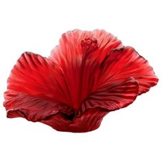 Daum Hibiscus Flower ($425) ❤ liked on Polyvore featuring home, home decor, crystal sculpture, floral home decor, crystal home decor, daum and red home decor