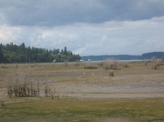 Across the Nisqually River estuary to Puget Sound.
