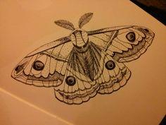 Moth tattoo.