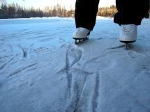 Fun Ideas for Celebrating a Birthday on Ice Skates: Invitations