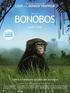 Bonobos est un film de Alain Tixier avec Sandrine Bonnaire, Emmanuel Curtil. Synopsis : Il était une fois au cœur du Congo une espèce de grands singes que l'on ne trouve nulle part ailleurs, les bonobos. Plus intelligents, plus farceurs,