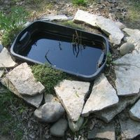 Garden ponds are wonderful, self-sustaining ecosystems in your garden. They attract birds and wildlife and are easy to care for. You can pay a pond company a lot of money to build a pond, or spend plenty of time and money doing it yourself. If you just want a little pond, it's very easy and cheap to make one out of a plastic container.