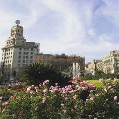 Je suis vraiment tombée amoureuse de cette ville 😍 Je pourrais y aller tous les week-ends, toute mes vacances, à n'importe quel saison ! Je m'y plais et m'y sens bien . Barcelone ❤️ vraiment envie de découvrir et voyager! Dites moi où vous aimez aller, ça me donnera des idées ! 😉💋 #barcelona #barceloneta #españa #travel #travelphotography #travelgram #travel #tourism #travelgram #meetingprofs #eventprofs #meeting #planner #events #eventplanner #popular #trending #micefx [Visit…