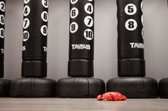 inPulse Sports equipment #Fight #IFight #BraveHouse  #Sports #Dance #Arts