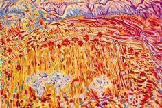 Sattar Bahlulzade-Goy-Gol-Lake-1972.jpg (432×290)