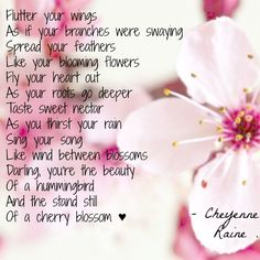 Humming bird Cherry blossom flower pink flutter wings petals feathers heart grow sweet nectar beauty poem poetry