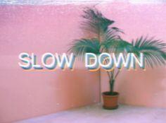 Palmen Slow Down