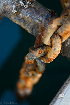 Rust by kylewrage, via Flickr