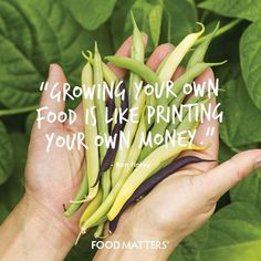 """""""Growing your own food is like printing your own money."""" - Ron Finley  www.foodmatters.tv #foodmatters #FMquotes"""