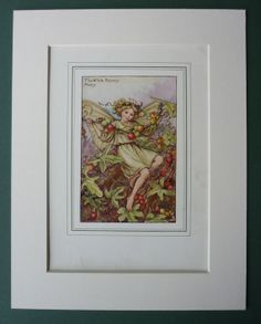 The White Bryony Fairy by Cicely Mary Barker by PrimrosePrints, £9.00