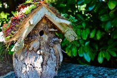 Wood stump birdhouse with leaf roof...cute!