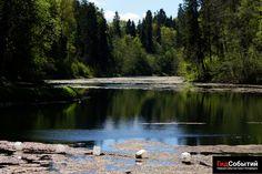Лето подходит к концу, хотя, вряд ли это можно назвать летом, но тем не менее, есть еще в запасе несколько week-endов, чтобы посетить радоновые озера в деревне Лопухинка в Ломоносовском районе Санкт-Пететербурга.