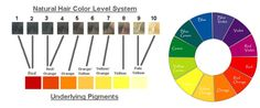 Infogarphic showing underlying hair color pigments and the color wheel Hair Color For Women, Color Your Hair, Hair Colour, Redken Color Chart, Hair Color Wheel, Local Hair Salons, Hair Levels, Hair Foils, Color Correction Hair