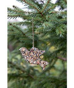 Attract blue jays and goldfinches in winter with this frozen birdseed ornament, adapted from Ernst Kirchsteiger's Swedish Christmas Traditions ($19.95; Skyhorse).  Instructions: Bird Seed Ornament   - CountryLiving.com