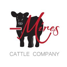MIRES CATTLE COMPANY | #Logo #Design  By Morgan Leigh Meisenheimer www.facebook.com/MLMeisenheimer
