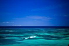 Jet skiing in #Aruba.