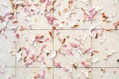 En direct de l'atelier - Florence Delahaye photographe, une série de 6 cartes postales, 10€