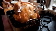 Thanksgiving recipes, ideas, advice, video and instruction, for turkey, side dishes, desserts and more.