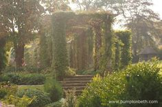 West Dean Gardens in West Sussex are beautiful. This is a wonderful garden to visit. Garden Arbours, Sussex Gardens, Days Out, Arches, Dean, Special Gifts, Entrance, Places To Visit, Country Roads