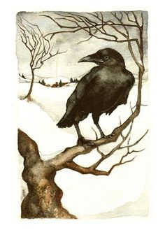 Rima Staines - Winter Crow this is similar to what I want in a tattoo except no snow more natural rolling golden hills a la northern California Crow Art, Raven Art, Bird Art, Art And Illustration, Illustrations, Watercolour Illustration, Jackdaw, Crows Ravens, Kraken