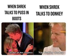 Hail Shrek by samsidney - A Member of the Internet's Largest Humor Community Really Funny Memes, Stupid Funny Memes, Funny Relatable Memes, Haha Funny, Funny Texts, Hilarious, Funny Stuff, Funny Humour, Funny Laugh