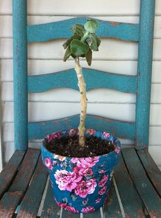 plant pot with napkin decoupage for Mother's Day - or a double vase: http://pinterest.com/pin/110901209546119360/