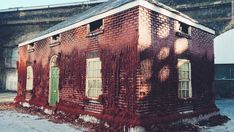 Alex Chinneck's mind-bending buildings