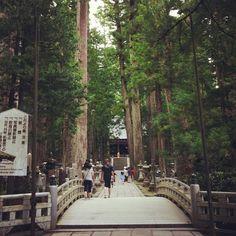 高野山 奥の院 in 高野町, 和歌山県