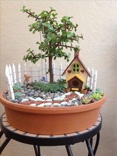 Rene Powell's media content and analytics Fairy Garden Pots, Indoor Fairy Gardens, Dish Garden, Fairy Garden Houses, Love Garden, Miniature Fairy Gardens, Succulent Gardening, Succulents Garden, Garden Crafts