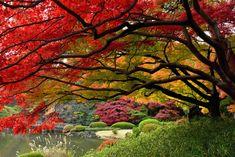 28 Orte der Erde, wo der Herbst unglaublich schön ist - ☼ ✿ ☺ Informationen und Inspirationen für ein Bewusstes, Veganes und (F)rohes Leben ☺ ✿ ☼