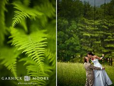 Swing and ferns. Garnick Moore photography.