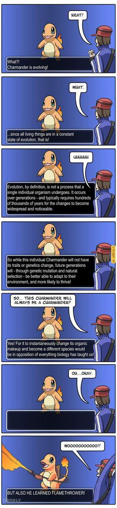 If Pokemon Evolutions Were Realistic