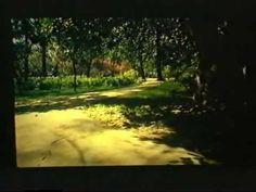 Vida y obra de Antonio Machado - Colectivo Ciclo (1981)