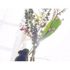 【mayumi37d0721love】さんのInstagramをピンしています。 《† † 見上げるうさぎ🐰 † † 2月が始まった▶️ † † 北海道は一番厳しい寒さを迎えるわけですが そんな時でもライフスタイルを楽しみたい⛄️❄️ † 北欧のインテリアも 寒さで家にいる時間が多いところから 発達したそうですよね🏠 † 私も花を飾るライフスタイルに 気持ちが動かされたわけで 桜からスタートな2月🌸 † 気は早いですが😽😜 † 桜を部屋に飾るとか夢でしたー💫 † 夢が叶ったー😆😆 † 嬉しい☺️😊 † 自分に許可できたから 飾れたわけで🍀 † 桜を飾れたことも 自分に許可できたことも 心を和ませるわけです😌💕 † † これからますます楽しみな2月です🌸🌸🌸 † † #桜#花のある生活#見上げる#宇宙の法則#豊かさ#本物#本質#人を大切にする人と繋がりたい#大好きに囲まれるライフスタイル…