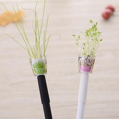 Going Green Plant Pens blank ink novelty pen plant pen Cute School Supplies, Office And School Supplies, Eco Friendly Cleaning Products, Cute Stationary, Stationary Items, Cute Pens, White Pen, Stationery Pens, Gifts For Office