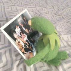 Yes Kermit, I feel you.that's how I look at my posters Cute Memes, Funny Memes, Sapo Kermit, Sapo Meme, Frog Meme, V Bts Wallpaper, Bts Meme Faces, Kermit The Frog, Reaction Pictures