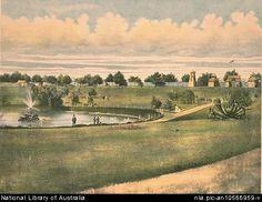 Moore Park, Zoological Garden, Elephant Ride, Dust Bowl, Historical Images, Sydney, Past, Queens, Public