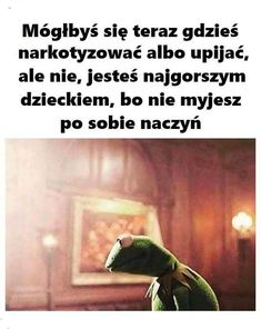Kermit, Wtf Funny, Hilarious, Polish Memes, Funny Mems, Best Mysteries, I Don T Know, Life Humor, Reaction Pictures