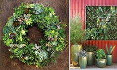 Large succulents | Large Succulent Wreath