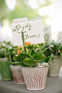 #potted-plants, #plants  Photography: First Comes Love Photo - firstcomeslovephoto.com Floral Design: Church Street Flowers - churchstreetflowers.com  Read More: http://www.stylemepretty.com/2012/10/19/dawn-ranch-lodge-wedding-from-first-comes-love-photo/