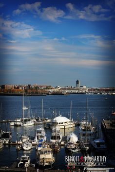 Ocean View at the Boston Long Warf